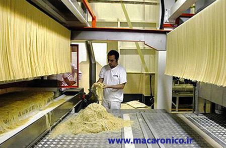 تولید و صادرات ماکارونی رشته ای