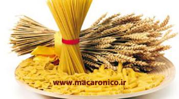 فروش عمده ماکارونی رشته ی اسپاگتی